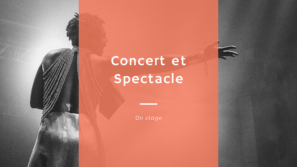 photographe concert spectacle paris